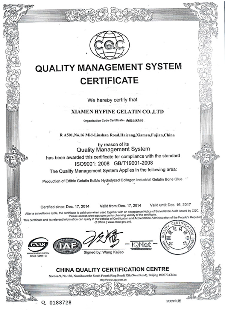 ISO 9001_副本
